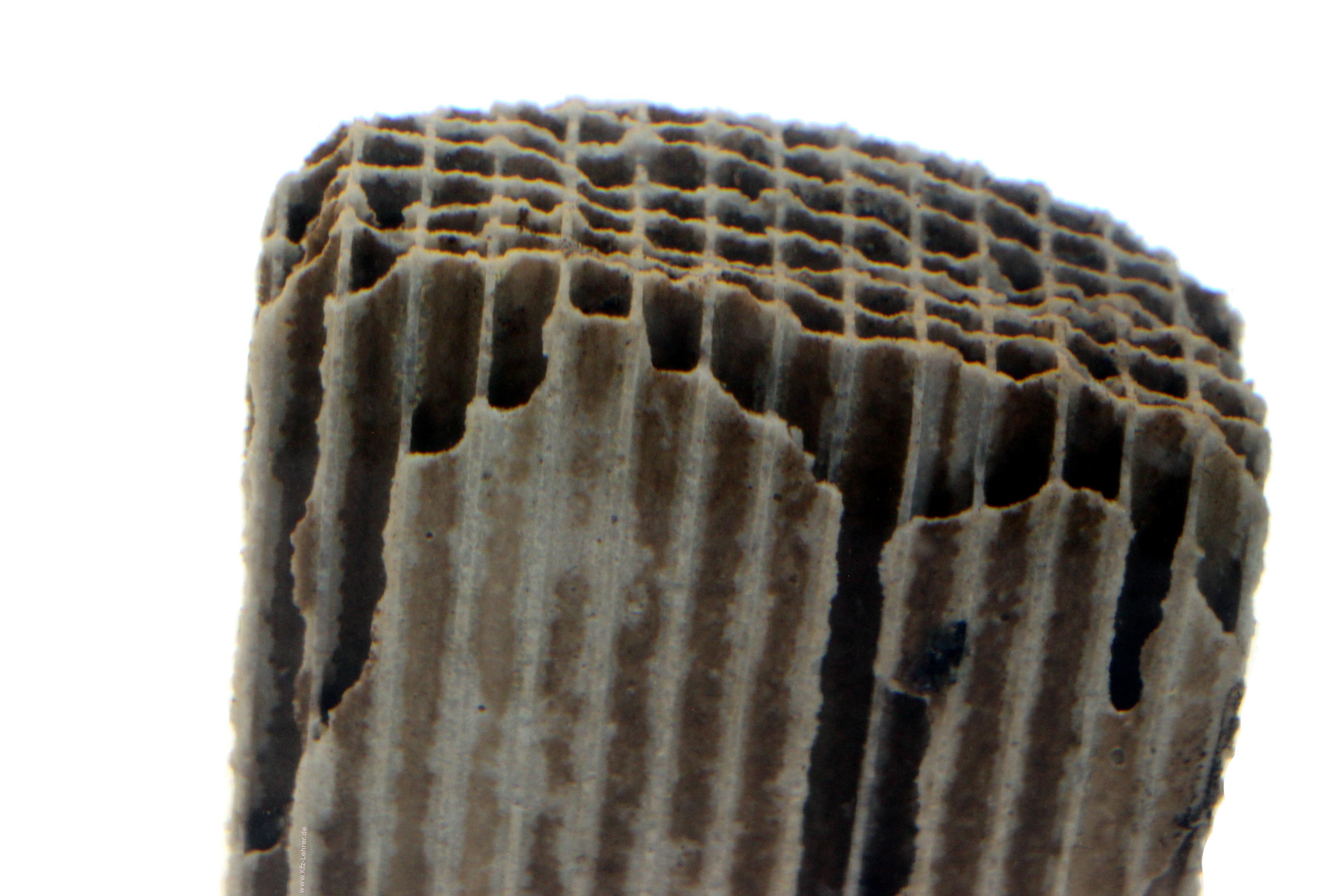 Blick auf die Kanäle eines Katalysatorstückes