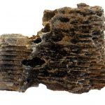Blick auf ein defektes Stück aus einem kaputten Katalysator